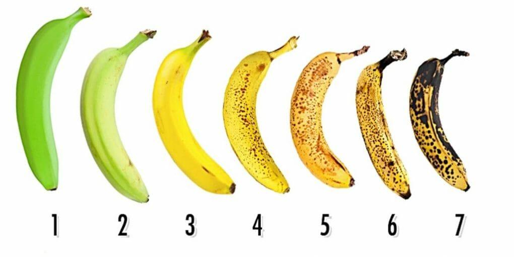 , Why is lead nurturing like ripening bananas?